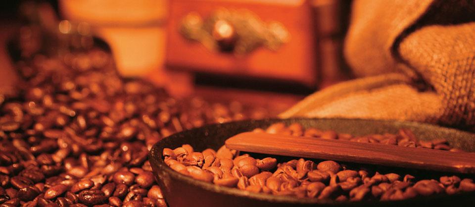 引進最精密的包裝機械設備,及日本原裝進口的咖啡掛耳包,我們的堅持是讓專業與品質兼具
